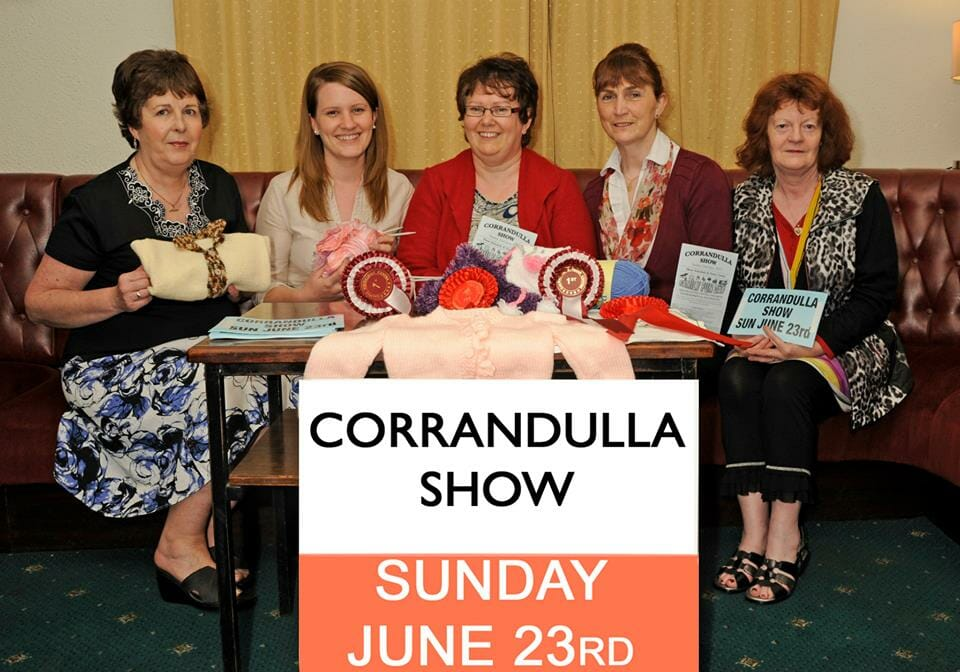 Corrandulla Show Launch 2013  (5)