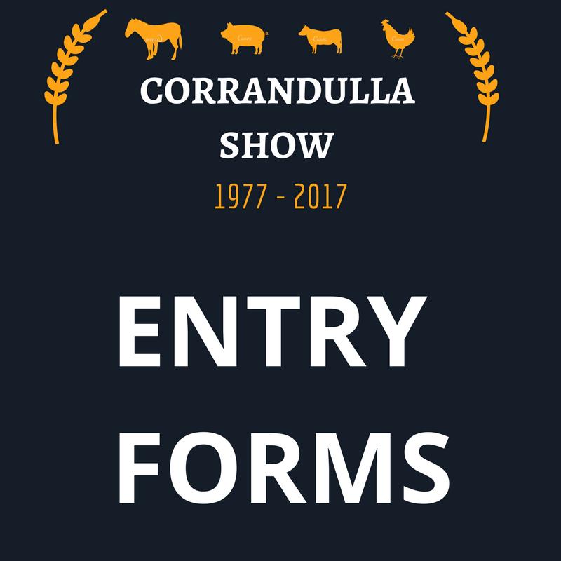 CORRANDULLA SHOW (10)