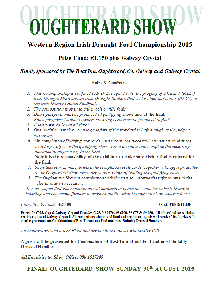 Western Region Irish Draught Foal Championship qualifier